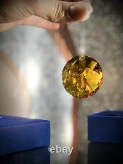 Swarovski Fire Ornament 2010 Scs Event Pieces Super Rare Crystal Sun Catcher