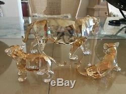 Swarovski Objets De Collection En Cristal Endangered Species Tiger 2 Cubs 3 Pièces