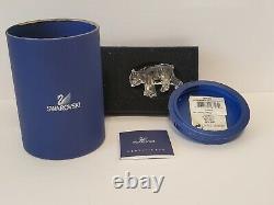 Swarovski Scs Membres Exclusive Piecesister Bear 0866308 Retraité Rare